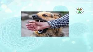 ريبورتاج للتلفزيون الجزائري حول داء الكلب، مختصيين من معهد البيطرة جامعة البليدة 1